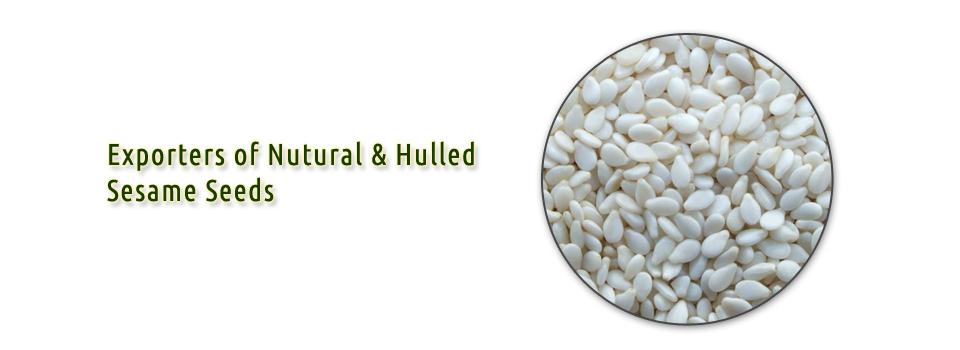 Hulled sesame seeds india