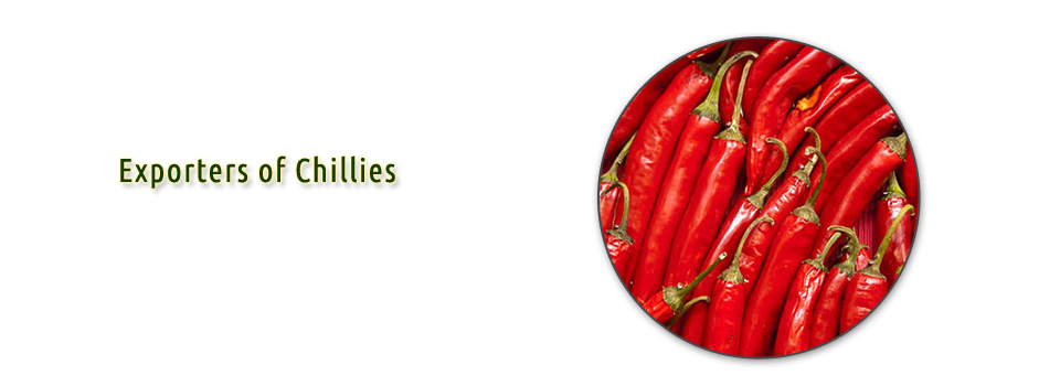 Red chillies india