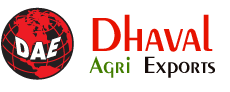 Dhaval Agri Exports Logo